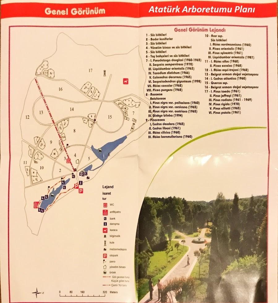 Ataturk-Arboretumu-Planı