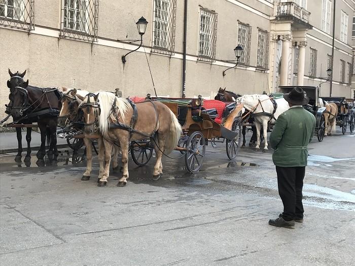 Salzburg At arabaları - Salzburg Gezi REhberi